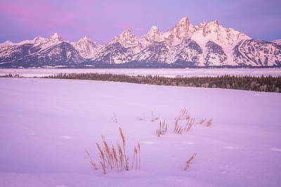Royalty-Free and Rights-Managed Images - Winter Calm by Darren White
