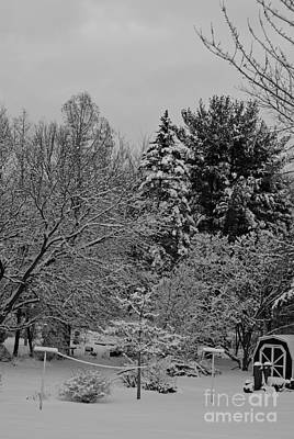 Frank J Casella Royalty-Free and Rights-Managed Images - Winter Clothesline - Black and White by Frank J Casella