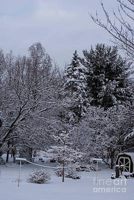Frank J Casella Royalty-Free and Rights-Managed Images - Winter Clothesline by Frank J Casella