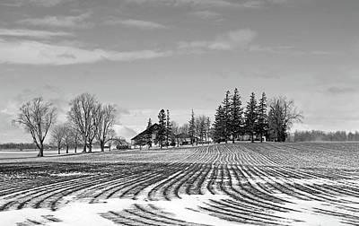 Cartoons Tees - Winter Farm Black And White by Debbie Oppermann