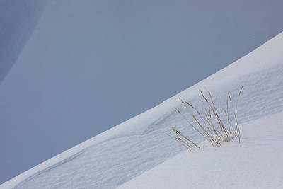 Royalty-Free and Rights-Managed Images - Winter Slope by Brian Knott Photography
