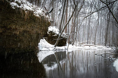 Photograph - Winter Storm Carver Roehl County Park by Carl Simmerman
