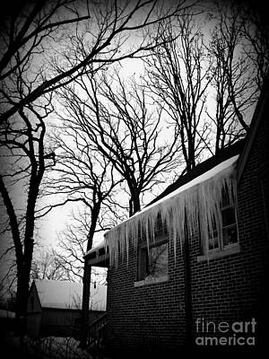 Frank J Casella Royalty-Free and Rights-Managed Images - Winter Trees and Icicles - Holga Effect by Frank J Casella