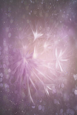 Royalty-Free and Rights-Managed Images - Winter Wishes Shades of Pink  by Carol Japp