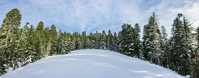 Royalty-Free and Rights-Managed Images - Winter Wonderland 3 by Pelo Blanco Photo