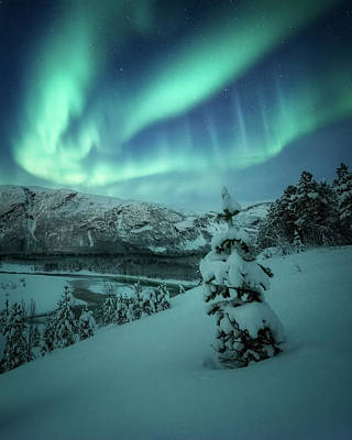Photograph - Winter Wonders by Tor-Ivar Naess