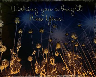 Staff Picks Judy Bernier - Wishing You a Bright New Year Greeting Card by Mother Nature