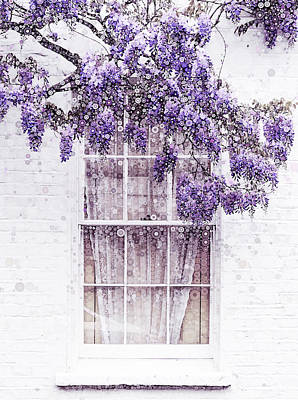 Still Life Royalty-Free and Rights-Managed Images - Wisteria Window by Susan Maxwell Schmidt