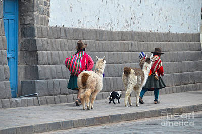 Wild Weather - Women and Alpacas in Cusco by Catherine Sherman