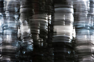 Photograph - Wood Rock by Julia Chodor