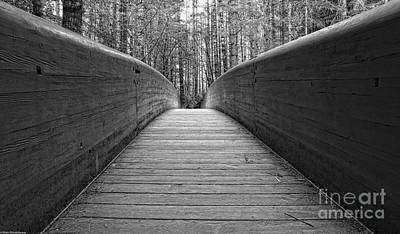 Design Turnpike Books Rights Managed Images - Wooden Bridge Black And White Royalty-Free Image by Mitch Shindelbower