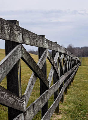 The Bunsen Burner - Wooden Fence by Deborah Lucia