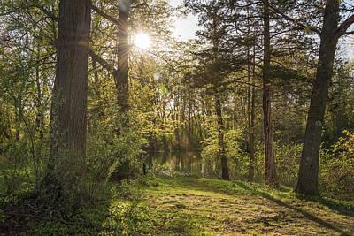 Miles Davis - Woodlands by Kristopher Schoenleber