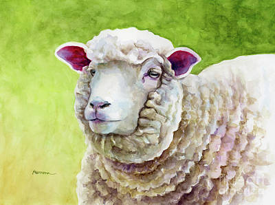 Royalty-Free and Rights-Managed Images - Woolly Sheep by Hailey E Herrera