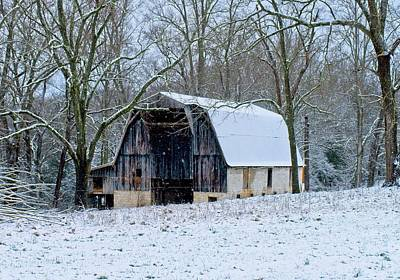Animal Portraits - Working Barn in the Snow by Douglas Barnett
