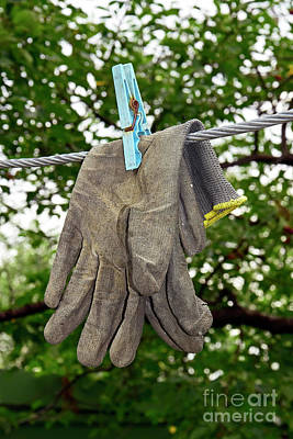 World War 2 Action Photography Royalty Free Images - Working gloves pinned on the wire Royalty-Free Image by Tibor Tivadar Kui