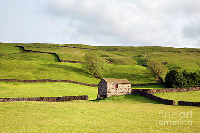 Photograph - Worton Pasture 3 by Gavin Dronfield