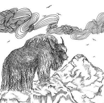 Animals Drawings - Yak by Jennifer Wheatley Wolf