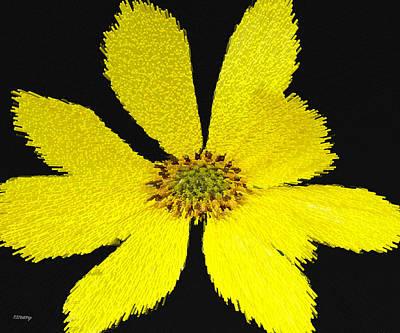 Stellar Interstellar Royalty Free Images - Yellow N Black Royalty-Free Image by Patrick J Murphy