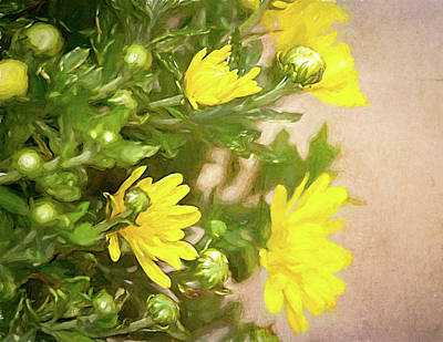 Colorful People Abstract Royalty Free Images - Yellow Painted Mums Royalty-Free Image by Debra Martz