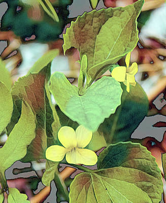 Vintage Signs - Yellow Violets by Susan Buscho