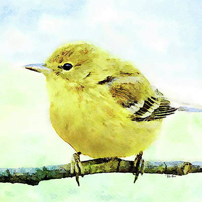 Painting - Yellow Warbler by Russ Harris