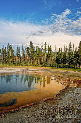 Rainy Day - Yellowstone 12 by Micah May