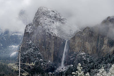 Amy Weiss - Yosemite in Fog by Norma Brandsberg