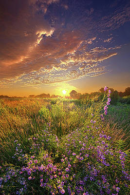 Water Droplets Sharon Johnstone - Your Voice Will Call To Me by Phil Koch