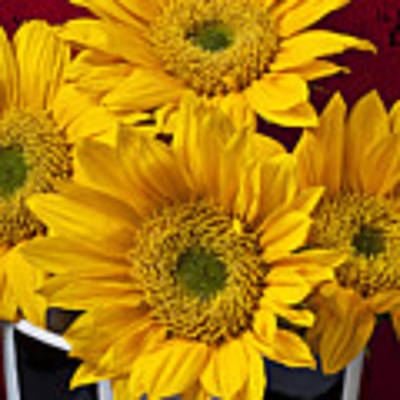 Bunch Of Sunflowers Art Print by Garry Gay