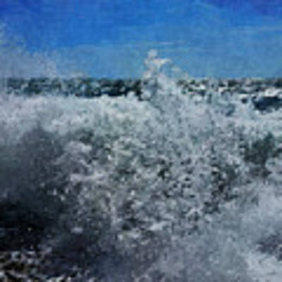 Levant Spray Art Print by Julian Perry