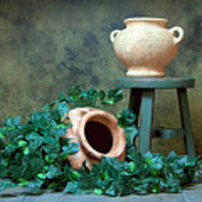 Pottery With Ivy I Art Print by Tom Mc Nemar