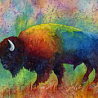 American Buffalo 6 Art Print by Hailey E Herrera