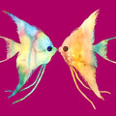 Angelfish Kissing Art Print by Hailey E Herrera