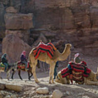 Bedouin Tribesmen, Petra Jordan Art Print by Perry Rodriguez