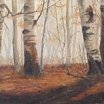 Birches Art Print by Jan Byington