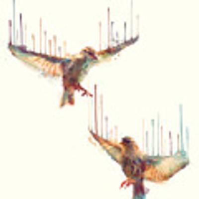 Birds // Awake Art Print by Amy Hamilton