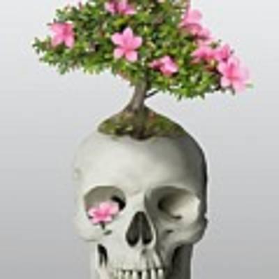 Bonsai Skull Art Print by Ivana Westin