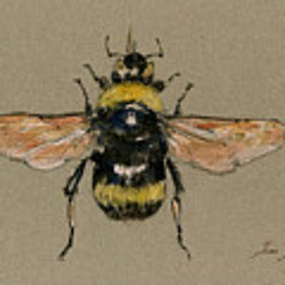Bumble Bee Art Wall Original by Juan  Bosco