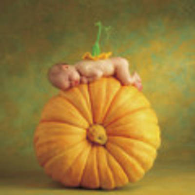 Country Pumpkin Art Print by Anne Geddes