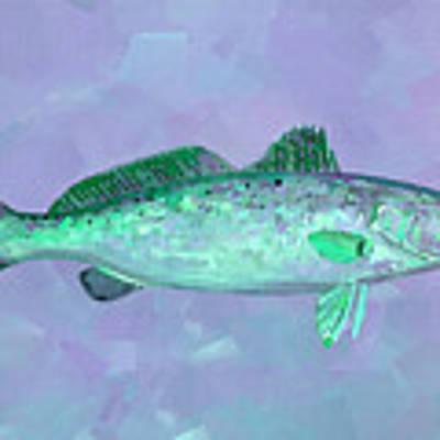 Fanciful Lavender Mint Sea Trout Art Print by Shelli Fitzpatrick