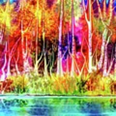 Forest Stream Art Print by Darren Cannell