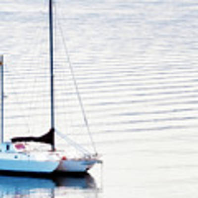 High Key Sail Art Print by Dee Browning