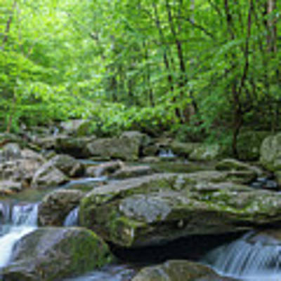 High Shoals Falls Trail In South Mountain Panorama Art Print by Ranjay Mitra