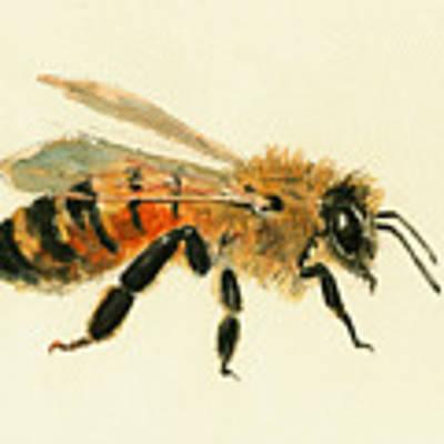 Honey Bee Painting Original by Juan  Bosco