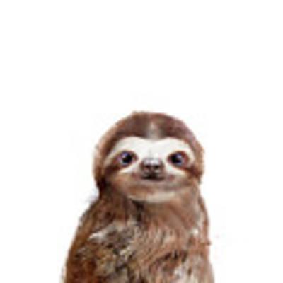 Little Sloth Art Print by Amy Hamilton