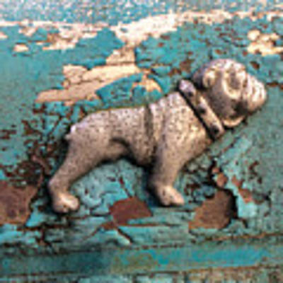 Mack Bulldog II Art Print by Terry Rowe