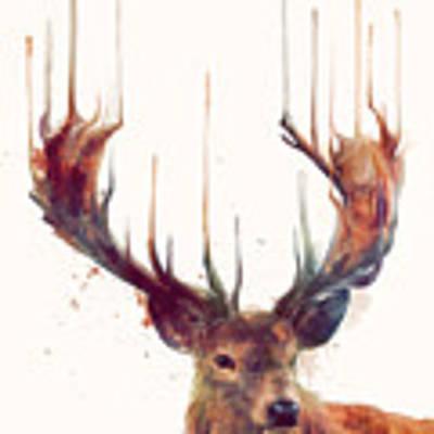 Red Deer Art Print by Amy Hamilton