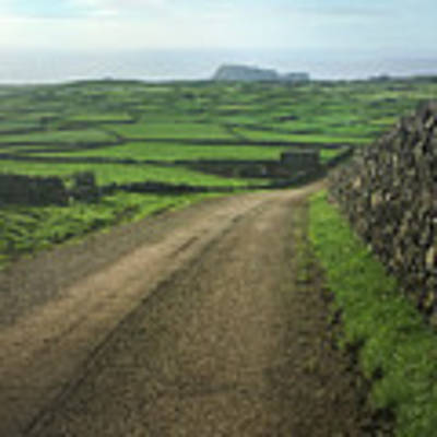 Road Through The Pastrues Of Terceira  Art Print by Kelly Hazel
