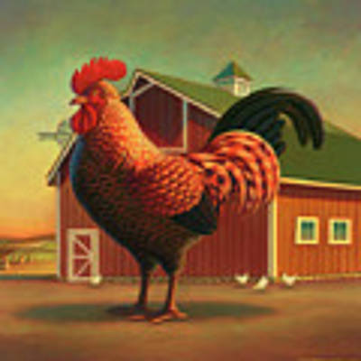 Rooster And The Barn Art Print
